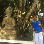 Buddha Statue near Wish Tree