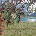 Zdjęcie Lago di Dobbiaco