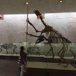 Φωτογραφία: Orlov Paleontological Museum