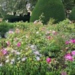 Sudeley Castle Queen's Rose Garden