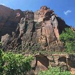 Foto van Zion Canyon Scenic Drive