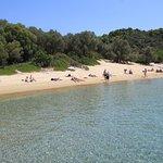 Foto de Tsougrias Beach