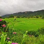A1 Trekking Kalaw Foto
