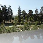 Bild från Apple Park Visitor Center
