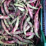 Foto de Mercado de Abastos de Santiago