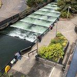 ภาพถ่ายของ Bonneville Lock & Dam