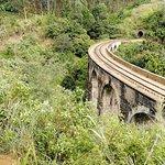 Demodara Nine Arch Bridge Foto