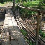 Foto de Wli Waterfalls