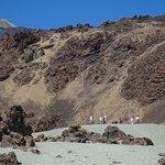 Foto de One Day In Tenerife