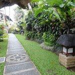 Walkways and gardens
