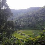 Chiangmai Trekking mit Piroon Foto
