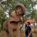 Photo of Samui Elephant Sanctuary