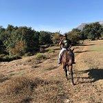 A wonderful time at Tannie del Llano. Horseback riding, hammock swinging, the wonderful Pepe the