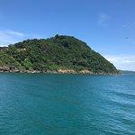 Bild från John's Island Tours