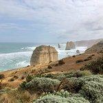 Фотография Wildlife Tours Australia