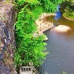 Foto de Paronella Park