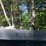 Ayako Miura Literature Museum صورة فوتوغرافية