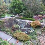 伊麗莎白女王公園照片