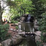 Bild från Jardin Japonais