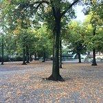 Foto de Lindenhofplatz