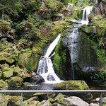 Фотография Triberger Waterfall
