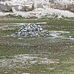 Foto de Robben Island
