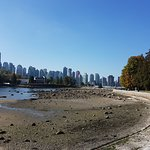 View of beach and cityscape from SeaWall trail