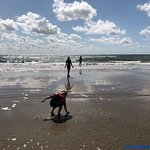 Photo de Blaavand Beach