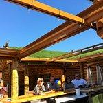 Grass roof!
