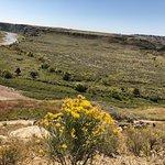Bild från Theodore Roosevelt National Park