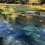 Photo de Ha Ha Tonka State Park