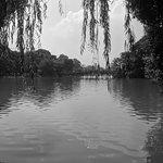 Photo of Lake of the Restored Sword (Hoan Kiem Lake)