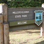 Photo of Millersylvania State Park