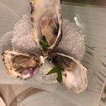 Valokuva: Pesce Briaco