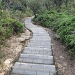 Фотография Jyun Jian Yan Trail