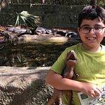 エレン トラウト動物園の写真