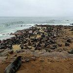 Billede af Cape Cross