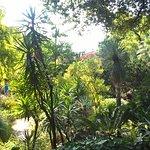 Photo of Heller Garden