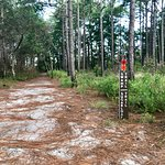 hiking trial marker