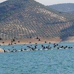 Andalucian Laketours Photo