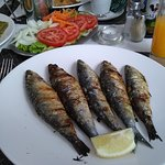 the Sardine Lunch