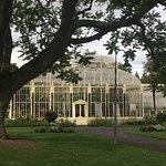 green house outside