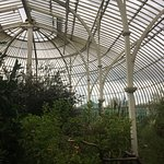 green house intside