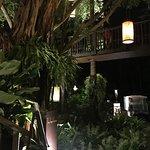 The Tree House - Anantara Mai Khao Phuket Villas Foto