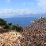 view on Calamosca beach