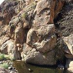 Foto de Cascadas del rio colorado