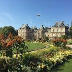 Фотография Люксембургский сад