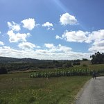 Фотография Camino de Santiago