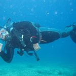 Photo of Under Hundred Diving