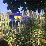 Foto de Jardim Majorelle